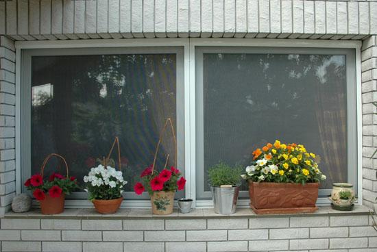 szunyoghalo ablak 1